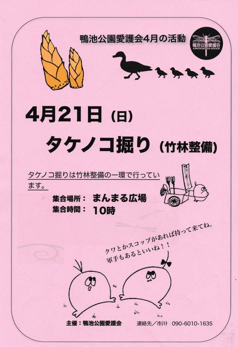 【イベント】タケノコ掘り(鴨池公園愛護会主催)